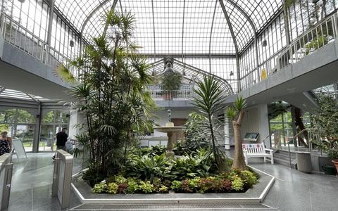 Palmengarten Frankfurt am Main, Umbau Eingangsschauhaus, 2020-2021